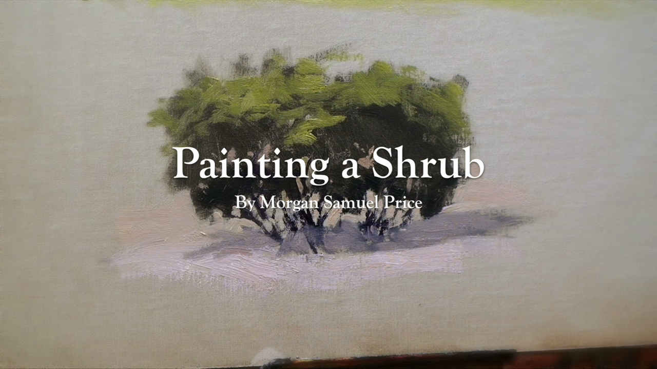 Painting Shrub